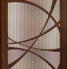Geomatric random curve door design